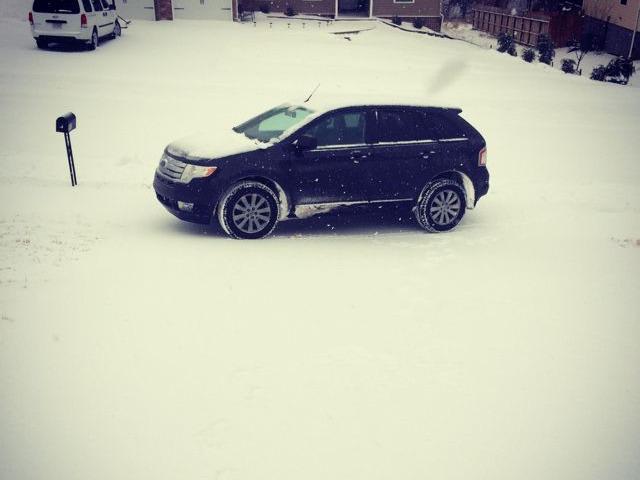 Elvira Winter 2014 Snow.jpg